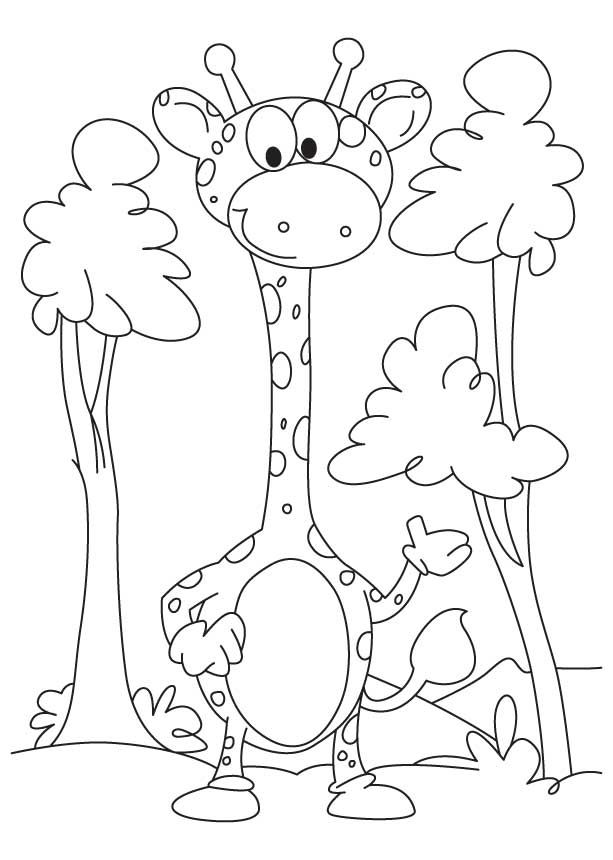 19 best Color pictures images on Pinterest Coloring sheets, Color - best of coloring pages to print animals