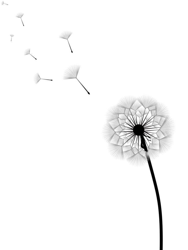 dandelion tattoo images google search tats pinterest best tattoo images dandelions and. Black Bedroom Furniture Sets. Home Design Ideas