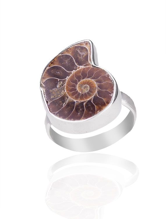 Sterling Silver & Ammonite Ring - Available at  Onyx Goldmsmiths