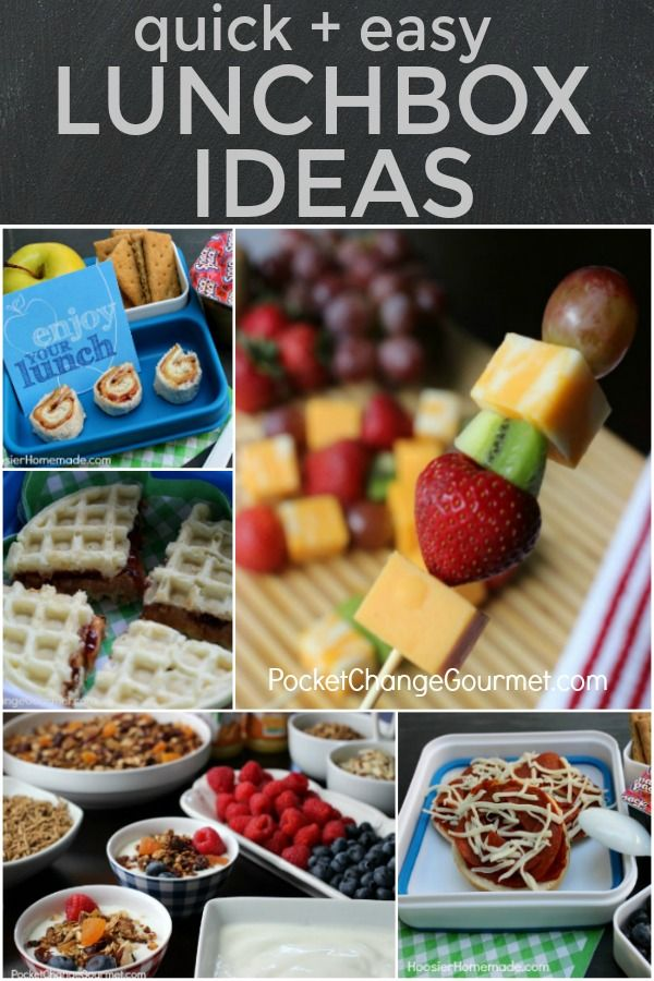 LUNCHBOX IDEAS -- Tired of the boring lunch? Do your kids hate eat the same thing everyday? Try one of these Quick and EASY Lunchbox Ideas!