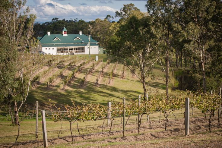 Wandin Valley Estate. Hunter Valley wedding venue. The perfect vineyard wedding venue set amongst the natural bushland of the Hunter Valley.