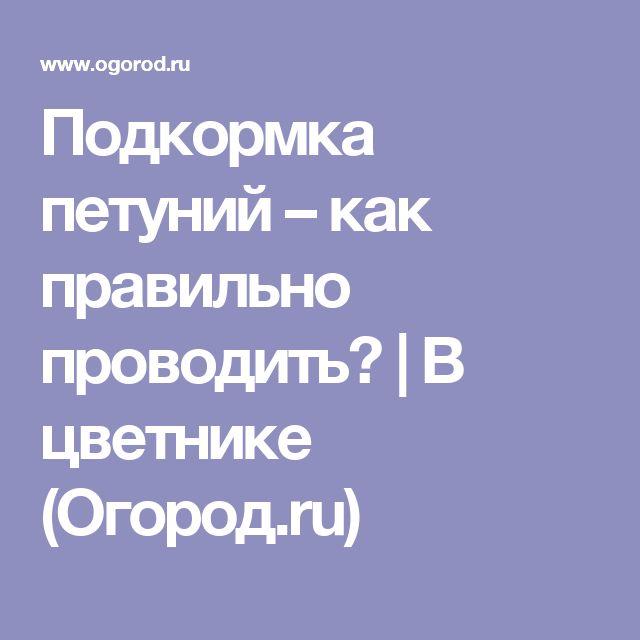 Подкормка петуний – как правильно проводить? | В цветнике (Огород.ru)