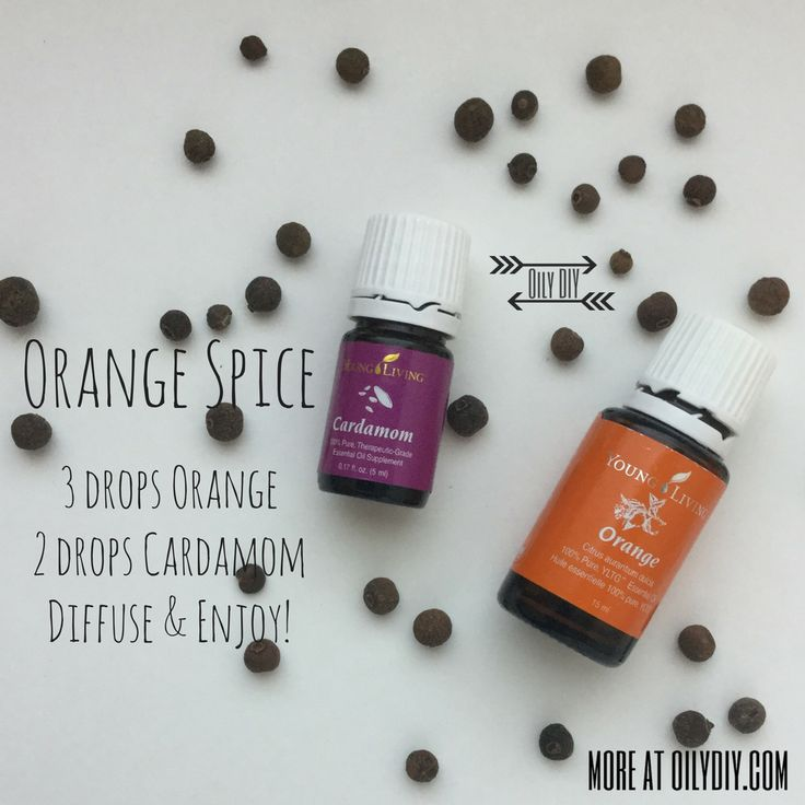 Orange Spice www.oilydiy.com #oilydiy #diy #youngliving #essentialoils #yleo #diffuser #fall