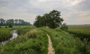 Wandelroute landgoed De Braak (Drenthe) Doolhof -Natuurmonumenten
