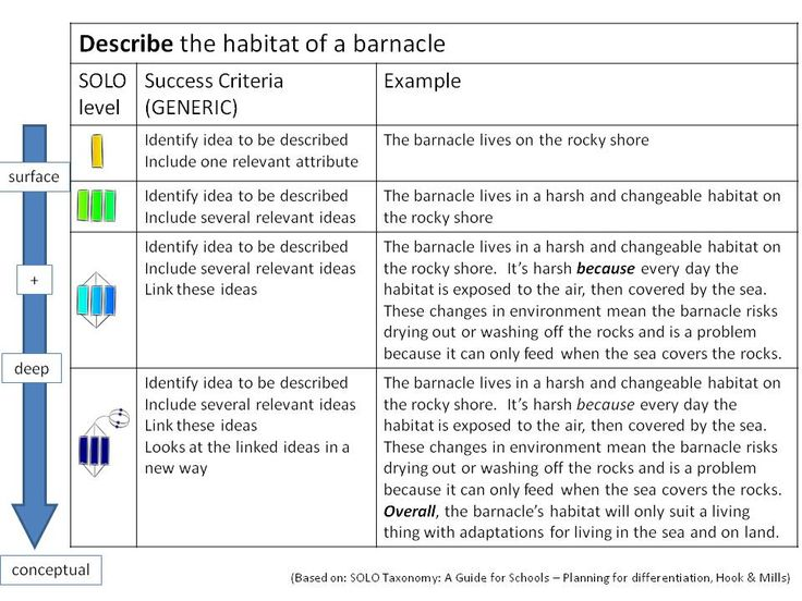 similarities and differences between blooms taxonomy and