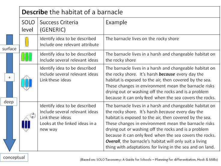SBR AU Taxonomy
