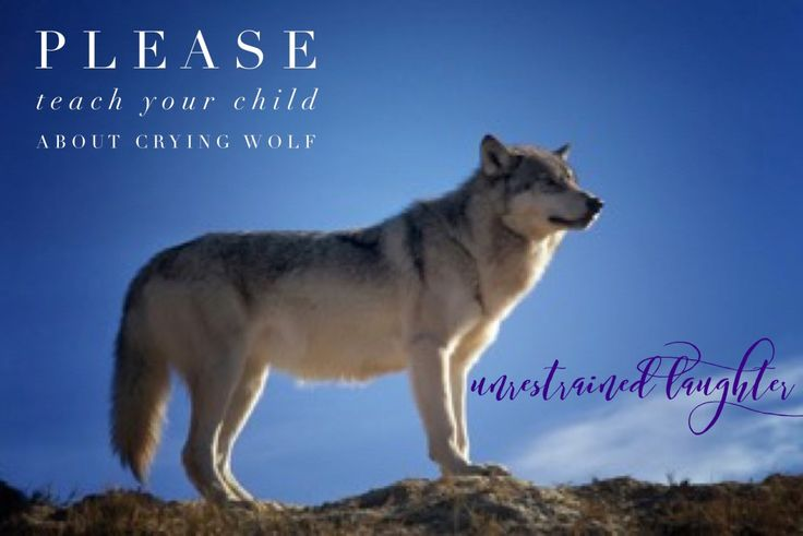 Please Teach Your Child About Crying Wolf