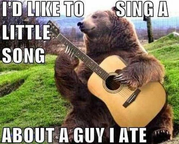 Amazing Animal Memes Guitar Playing Bear Funny Quotes