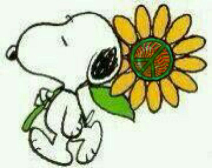 """Snoopy with peace sign flower.   (""""Peace Sign Art ✌❤."""")   --Peanuts Gang/Snoopy"""