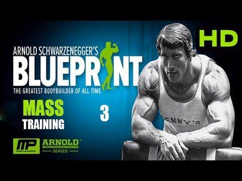 Arnold Schwarzenegger Blueprint Trainer 3 - Mass Training  Arms - new arnold blueprint app