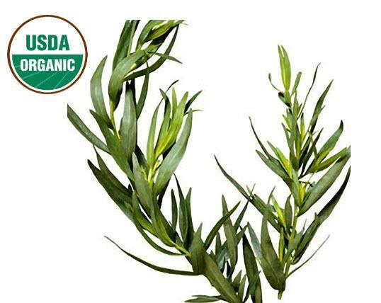 MudFarm Organix Botanicals - Tea Tree Essential Oil (ORGANIC) 15 ML, $19.99 (http://mudfarmorganix.com/tea-tree-essential-oil-organic-15-ml/)