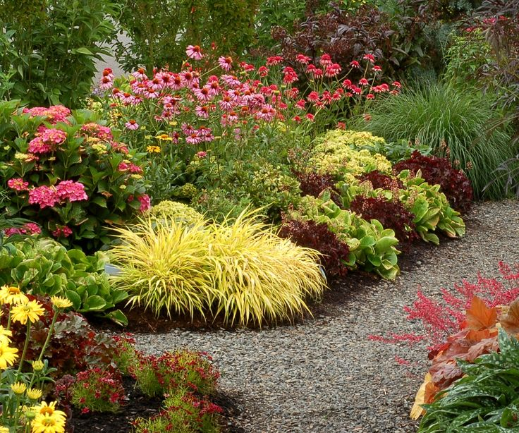 17 Best images about perfect plant pairings – Perennial Garden Plants