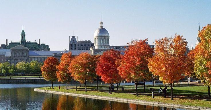 Intercâmbio em Montreal #viagem #canada #viajar