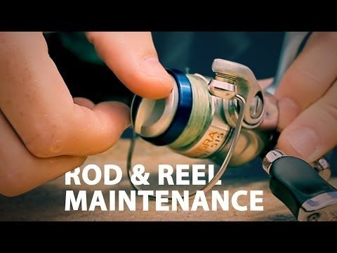 Rod & Reel Maintenance - How to Maintain a Fishing Rod - YouTube