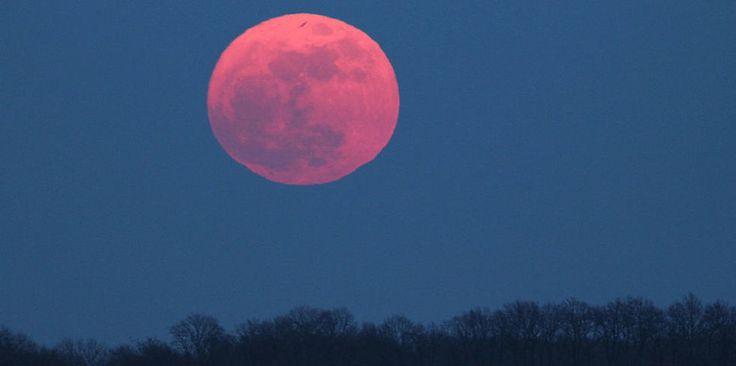 Pink Moon April 2016