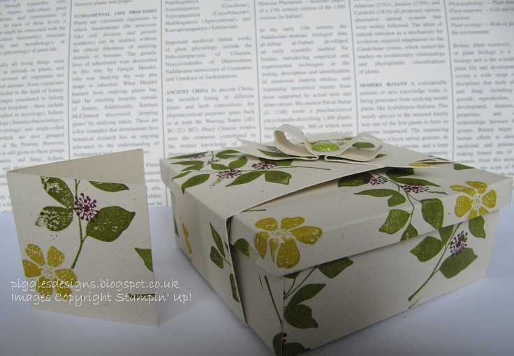 Gift box and card made from 1 sheet of A4 cardstock. Stamped with 'Summer Silhouettes' and 'Bloomin marvellous'
