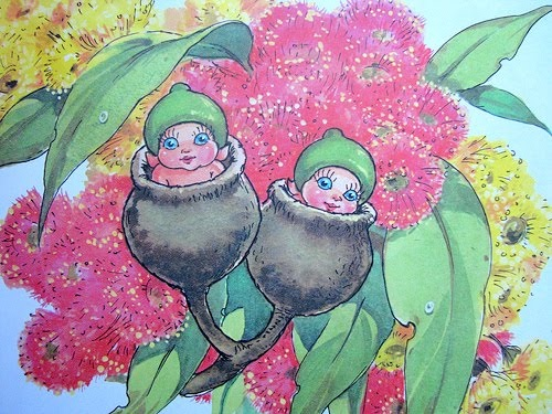 flower garden - May Gibbs: Gumnut babies