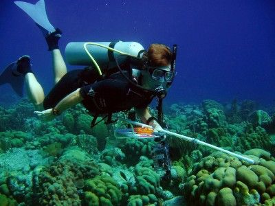 GIS Interactive Maps of Ocean Floor from Remote SensingLiving Oceans Foundation