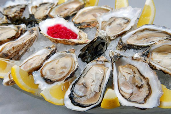 Oysters on the half shell / @Cultured Palate / http://myculturedpalate.com/blog/2013/01/21/benefits-of-eating-oysters/