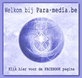 Para-media logo blauw