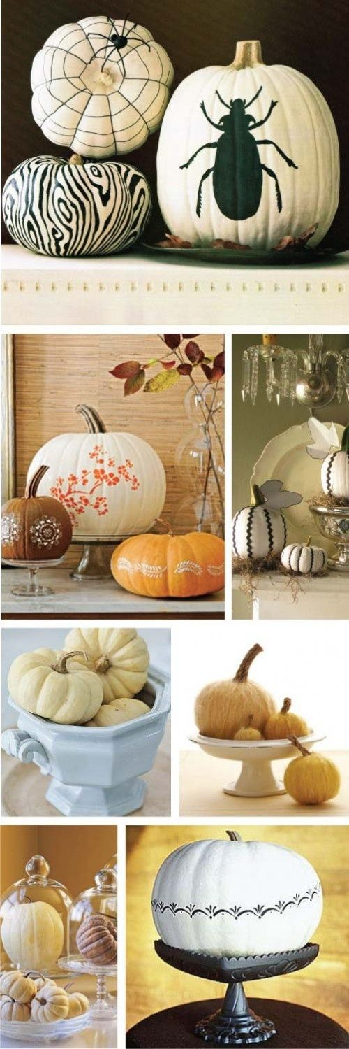 Fun pumpkin decorating ideas - love the flowered stencil on there