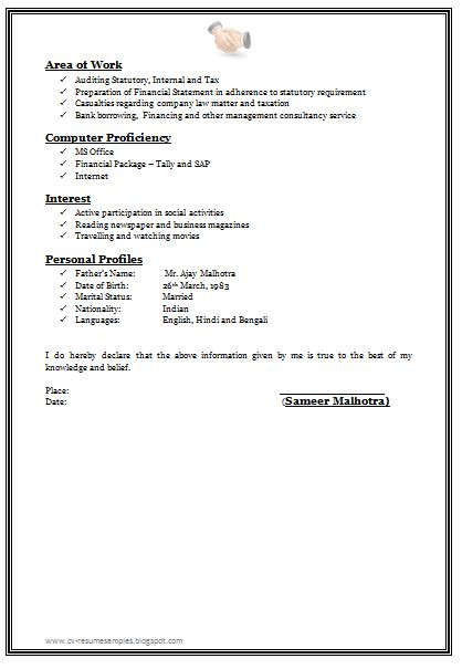 Professional Chartered Accountant Resume Sample Doc (2)