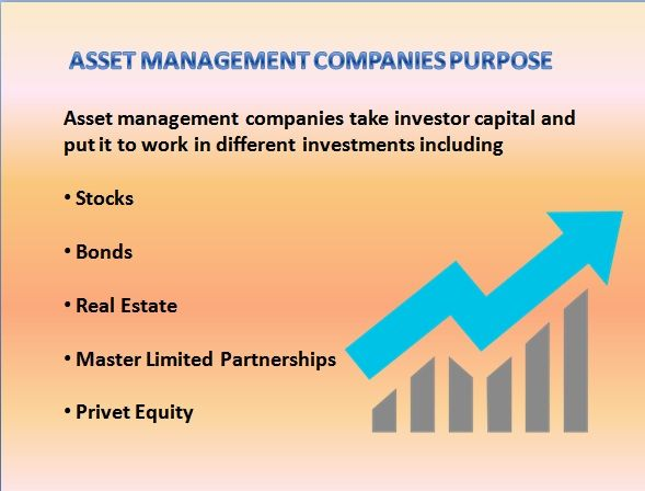 Top Asset Management Companies in India #assetmanagement