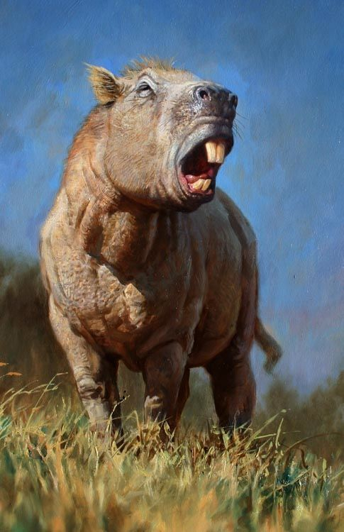 Josephoartigasia monesi, the largest rodent known to science. It's something like a cross between a guinea pig and a rhinoceros. It would have stood about four feet high at the shoulder, weighing about 2,000 pounds.