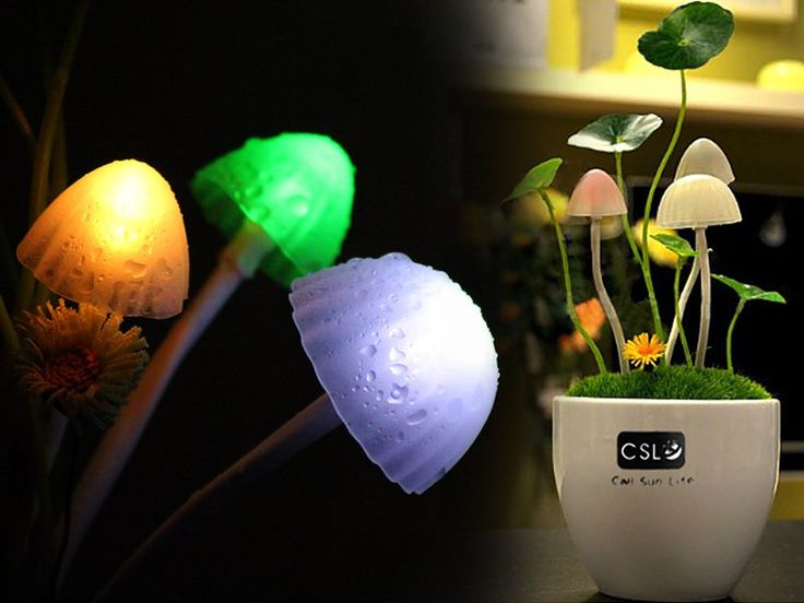 Avatar LED Sensor Mushroom Night Light @ CrazySales.co.nz | Crazy Deals, Daily Deals, One Day Deals, Grab One Day Deals - Crazy Sales NZ