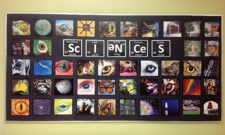 Oh my! Have students take photos of what their idea of science is and print to hang on the wall or door. Science classroom display photo - Photo gallery - SparkleBox