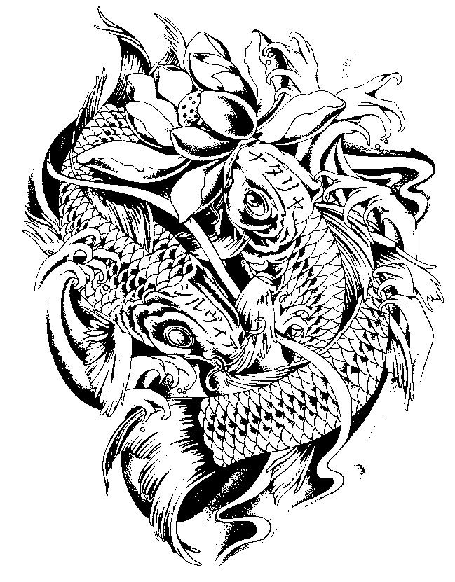 Coy Fish Adult Coloring Pages