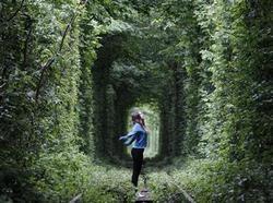 5月13日、ウクライナの町クレベンに、「愛のトンネル」として知られる木々の緑に囲まれたトンネルがある(2012年 ロイター/Gleb Granich)