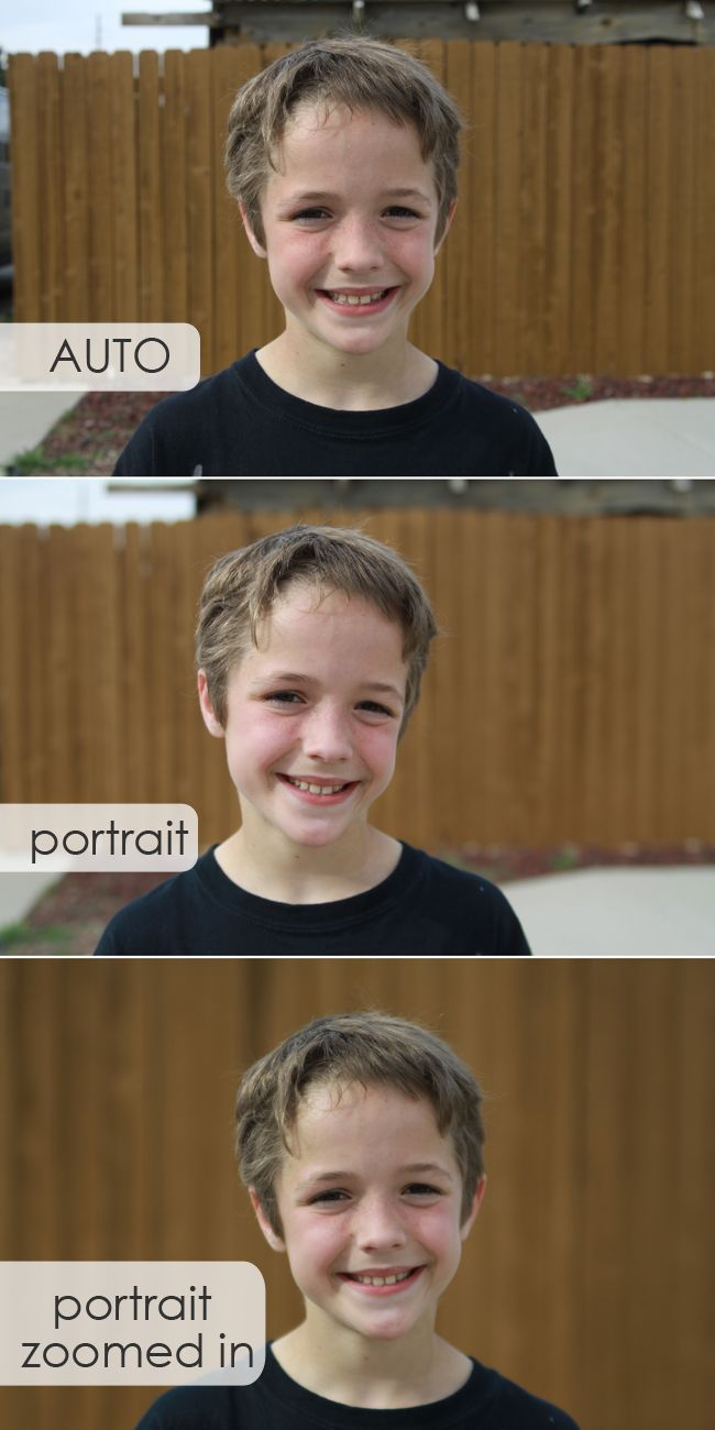 learn how to #blur the #background in your photos without messing with any settings - you can do this on AUTO! #photography tips from itsalwaysautumn.com