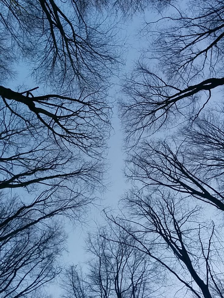 Chemin dans le ciel