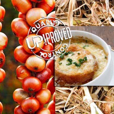 La ricetta di UP!: Zuppa gratinata di cipolle al latte