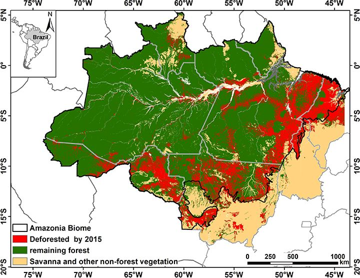 Deforestation Of The Brazilian Amazon Oxford Research