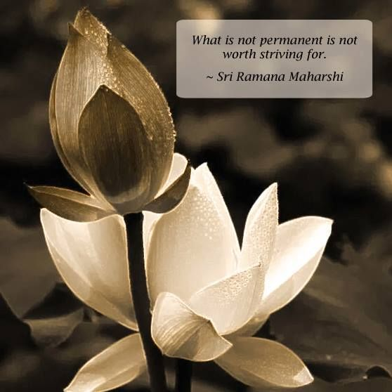 What is not permanent is not worth striving for. ~ Sri Ramana Maharshi