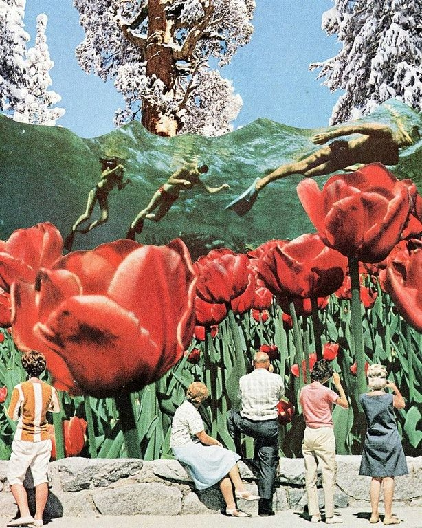 Swimming with Tulips, Hand-cut Collage 2017 : Art