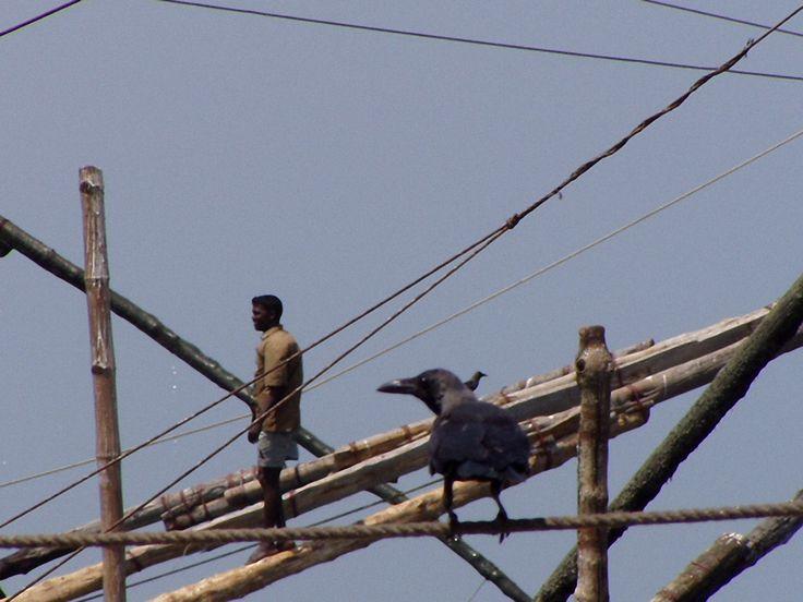 Man & Crow, India