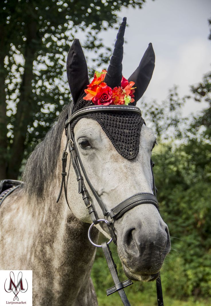 Haloween horse, gothic horse, pony fly bonnet, fly bonnet black, etsy shop, horse pic, photo probs, fantasy pony, eenhoorn, unicorn, black unicorn, unicorn horn black and orange, oornetje, vliegenmuts, paarden mode, horse fashion