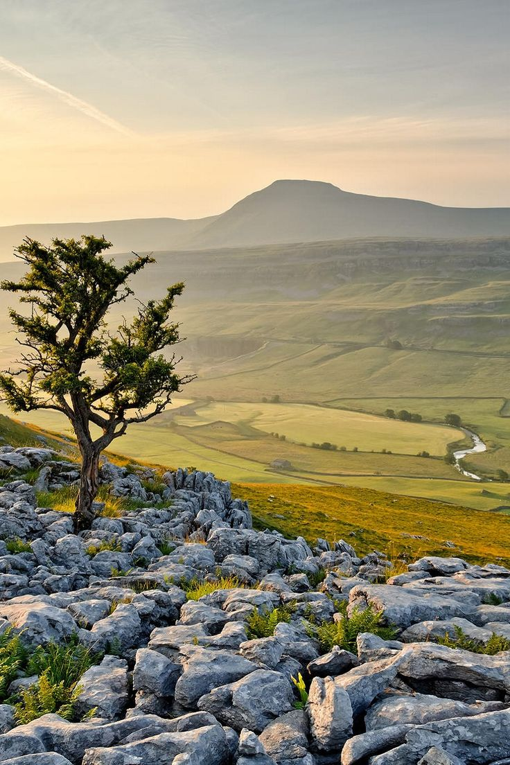 Ingleborough, England Yorkshire, part of the 3 Peaks walk....