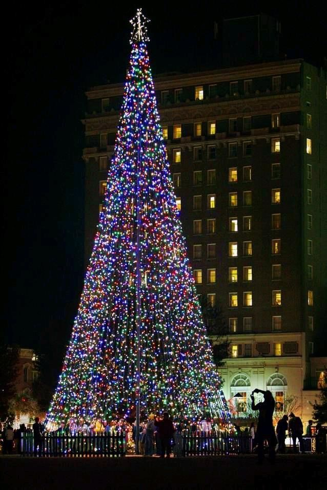Charleston Christmas Tree lighting. We saw this a few years ago. Park  across from Francis Marion. - Charleston Christmas Tree Lighting. We Saw This A Few Years Ago