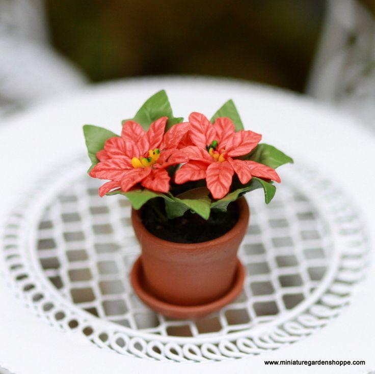 Miniature Potted Poinsettia