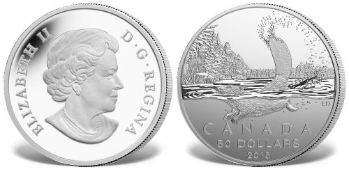 Srebrna moneta - bóbr kanadyjski