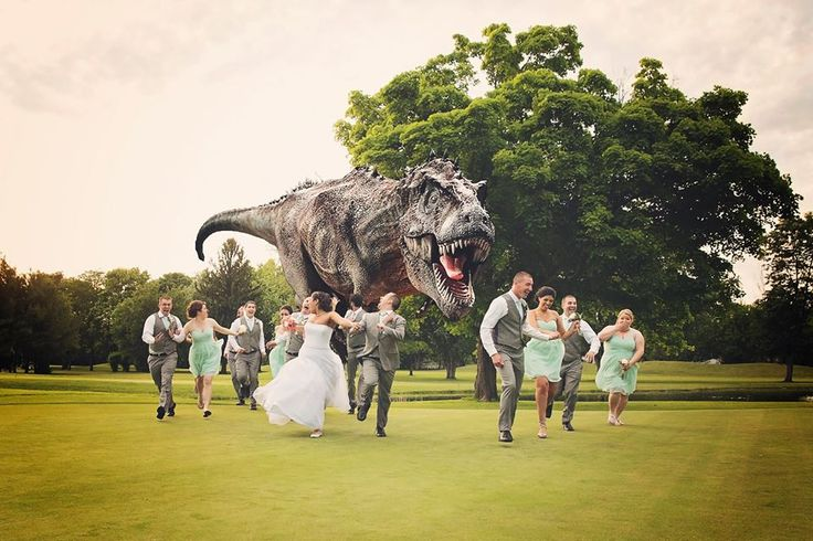 wedding photography, dinosaur chasing wedding party, funny, Lisa Karr Photography, Beloit Wisconsin, Find on Facebook