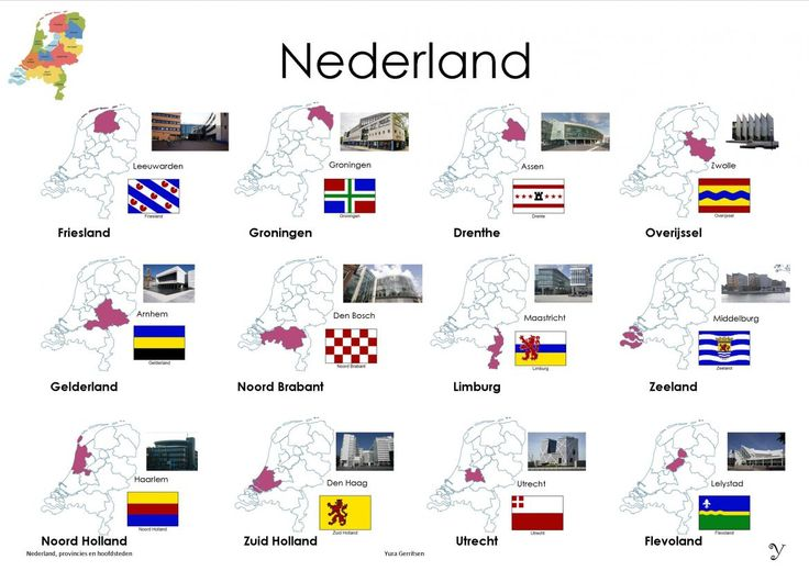 plaat nederland