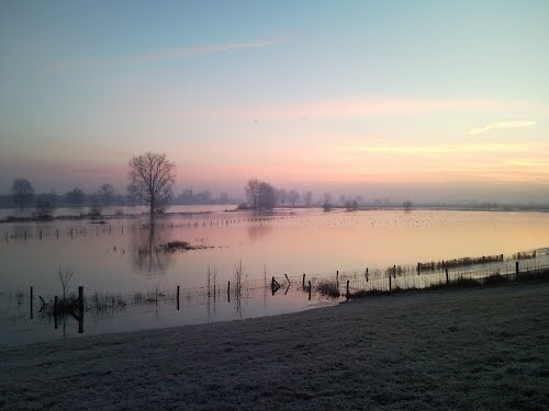 Maas in de ochtend bij hoog water
