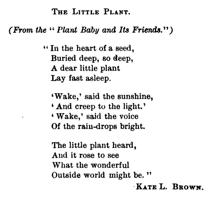 A little poem on how plants grow from seeds.