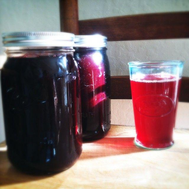 Honeyed Blackberry-Rhubarb Juice for the Mehu-Liisa Steam Juicer