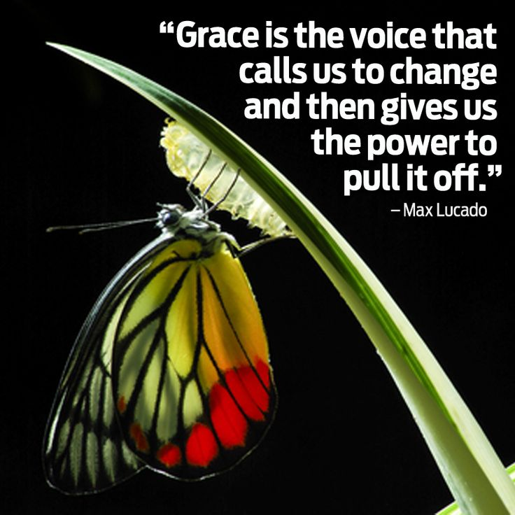 Spiritual Butterfly Quotes: Butterfly Quotes Inspirational